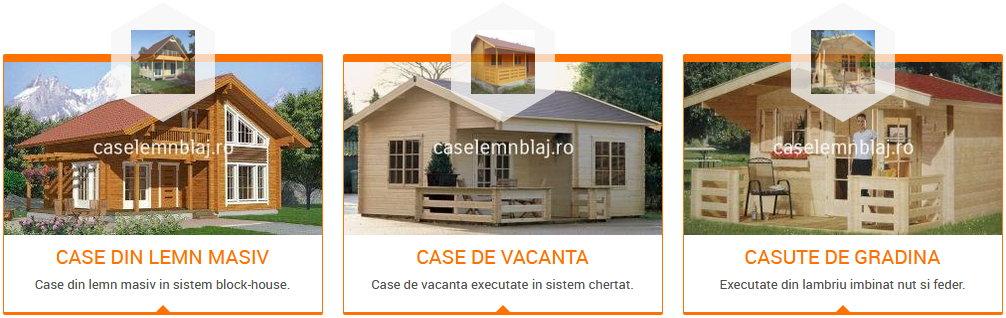 Case lemn Blaj